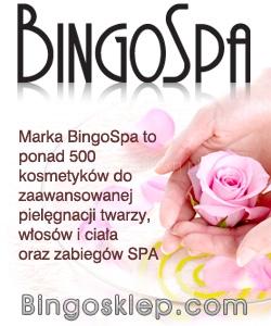 bingospa-baner-250x300
