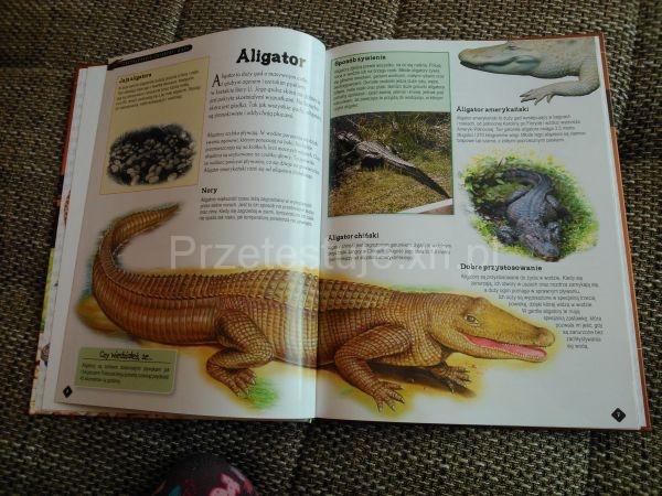 Encyklopedia zwierząt Wydawnictwo MD Monika Duda