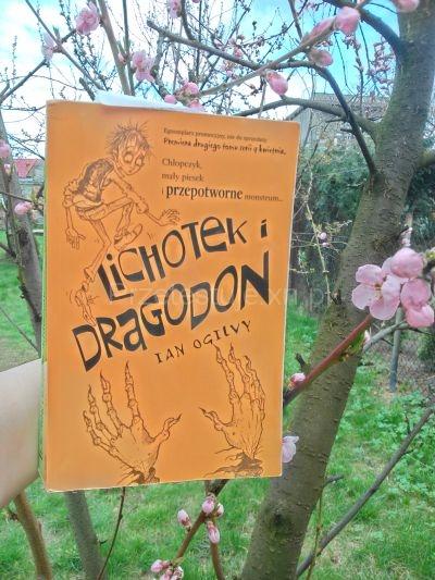 Lichotek i Dragodon