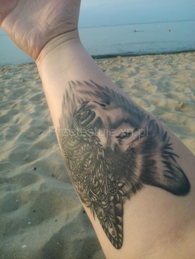 tatuaż wilk na ręce