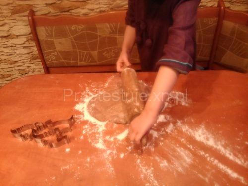 Cynamonowe dinozaury z masy solnej