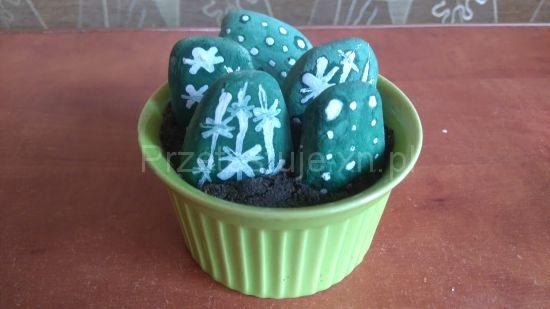kaktusy z kamieni 6