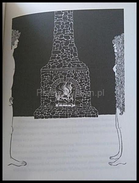Youko Shmizu ilustracje