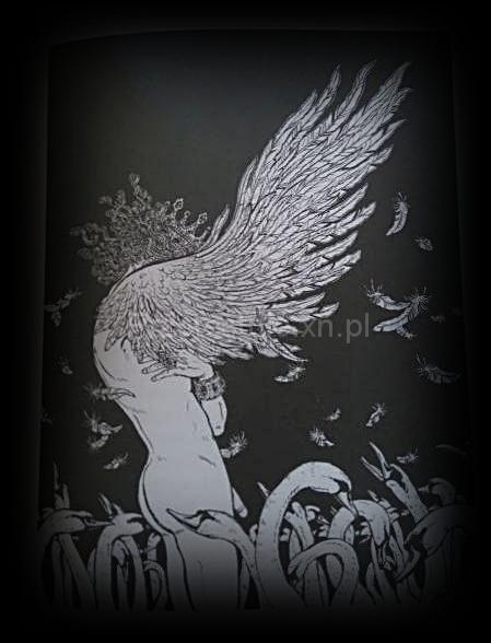 ilustracje Youko Shmizu