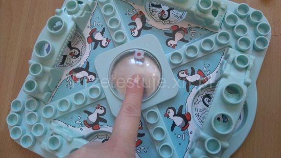 pingwiny na Antarktydzie uruchmianie kostki