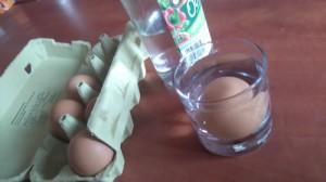 zabawa jajko w occie