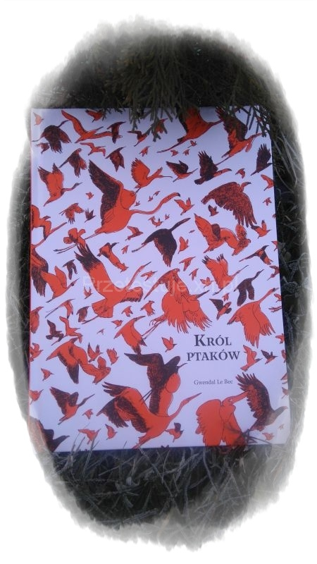 Król ptaków Gwendal Le Bec