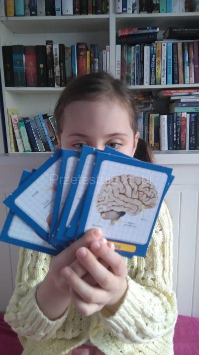Nadia i karty do nauki anatomii