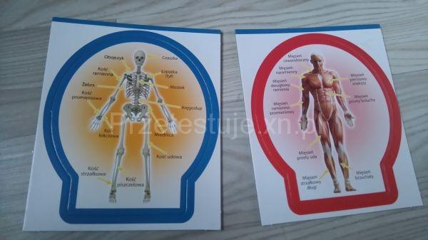 drugie karty anatomiczne Poznaj ciało człowieka Lisciani