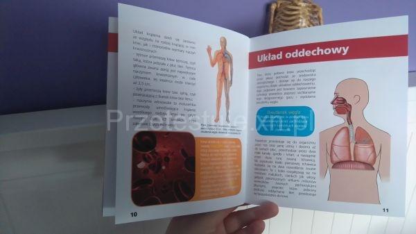 podręcznik Poznaj ciało człowieka Lisciani