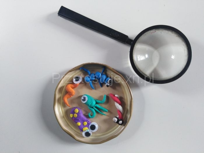 bakterie z plasteliny 1